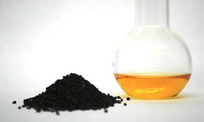 maslo-chernogo-tmina-poleznye-svojstva